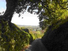 Walking From Modbury To Kingston